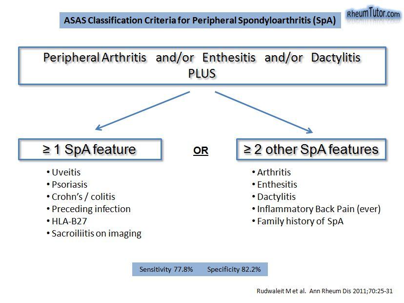 ankylosing spondylitis guidelines cartilaj de rechin 1000 mg
